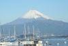 2009年元旦の長浜と富士山